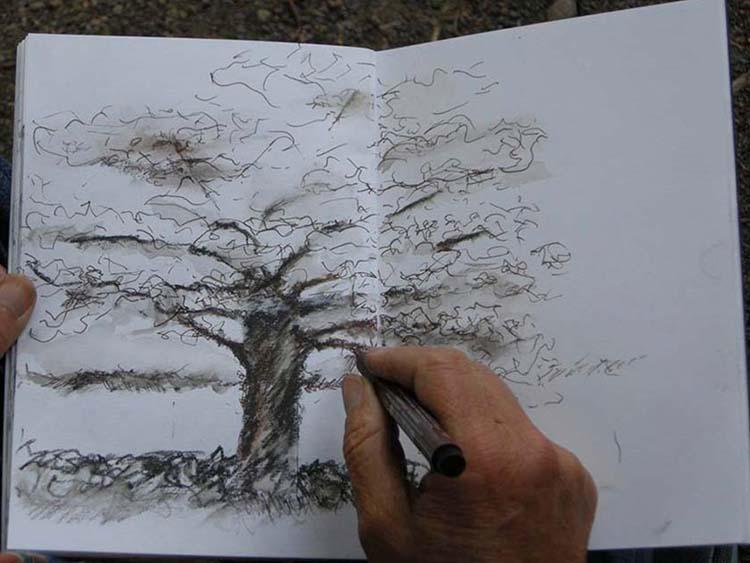 dessiner-arbre